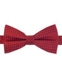 Tommy Hilfiger Pindot Bow Tie - Lyst