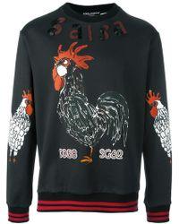 Dolce & Gabbana - Salsa Rooster Sweatshirt - Lyst