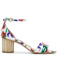 Ferragamo - 'eraclea' Floral Print Sandals - Lyst