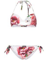 Dolce & Gabbana - Floral-printed Triangle Bikini Set - Lyst