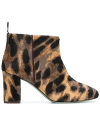 Paola D'arcano - Leopard Print Ankle Boots - Lyst