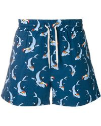 Band of Outsiders - Shark Track Shorts - Lyst