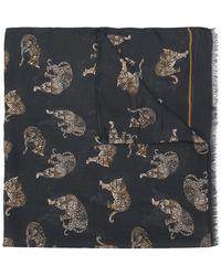 Dolce & Gabbana - Leopard Print Scarf - Lyst
