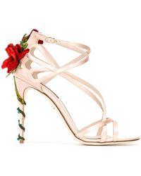 Dolce & Gabbana - Climbing Rose Sandals - Lyst