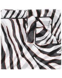 Roberto Cavalli Zebra Stripe Scarf