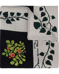 Oscar de la Renta Botanical Branches Embroidery Scarf - Blue