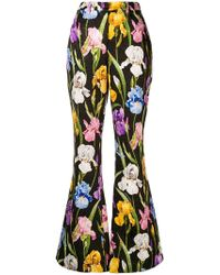 Dolce & Gabbana - Iris Print Flared Trousers - Lyst