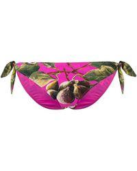 Dolce & Gabbana - Bikini Bottoms - Lyst