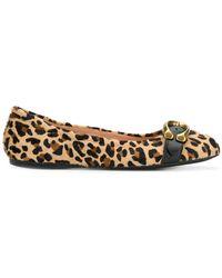 COACH - Leopard Ballerina Shoes - Lyst