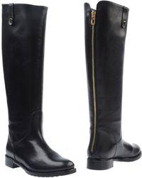 Noa - Boots - Lyst