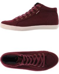 Pointer - High-tops & Trainers - Lyst