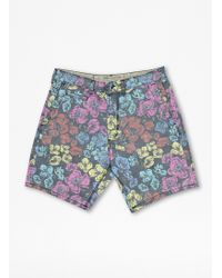French Connection Anenome Spring Shorts - Lyst