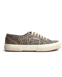 Superga Leopard Spotted Lace Up Pump - Lyst