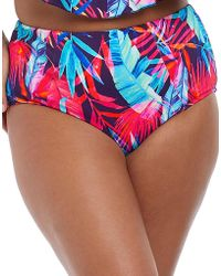 Elomi - Paradise Palm Classic Brief - Lyst