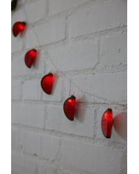 Forever 21 - Watermelon Led String Lights - Lyst