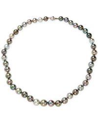 Tara Pearls - 14k White Gold & Tahitian Pearl & Necklace - Lyst