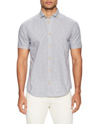 Color Siete - Murray Cotton Printed Sportshirt - Lyst