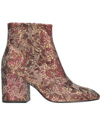 Ash - Egoiste Ankle-boots - Lyst