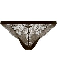 Wolford - Plush Lace Thong - Lyst