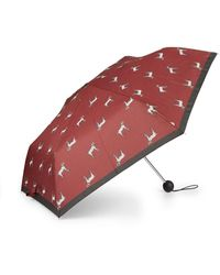 Hobbs Dalmation Umbrella