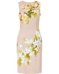 Hobbs - Francine Dress - Lyst