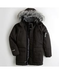 Hollister - Guys Down-blend Parka From Hollister - Lyst