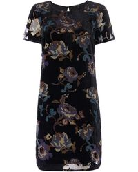 Vero Moda - Fiona Short Sleeve Devore Floral Shift Dress - Lyst