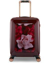 Ted Baker - Burgundy Porcelain Rose Cabin Suitcase - Lyst