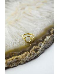 Maria Black - Gold Taylor Ring - Lyst