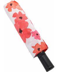 Dooney & Bourke - Umbrellas Bloom Umbrella - Lyst