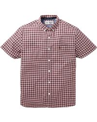 Original Penguin - Mini Plaid Shirt - Lyst