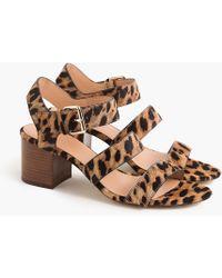 J.Crew - Three-strap Sandals In Leopard Calf Hair - Lyst