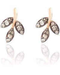 Latelita London Diamond Rose gold Leaf Stud Earring 9DOmc6B