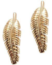 Betty Balaba - Banana Leaf Gold Stud Earrings - Lyst