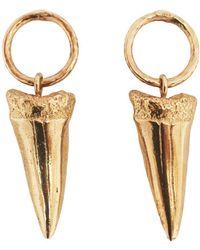Apis Atelier - Shark Tooth Earrings - Lyst