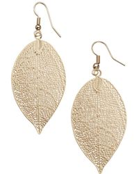Joe Fresh | Leaf Earrings | Lyst