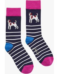Joules - Brilliant Bamboo Terrier Striped Socks - Lyst