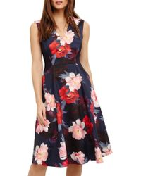 Phase Eight - Elba Floral Fit And Flare Dress - Lyst