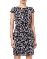 Adrianna Papell - Corded Lace Dress - Lyst