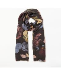 Modern Rarity - Bohemian Floral Wool And Silk Scarf - Lyst