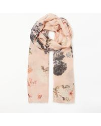 Modern Rarity - Trade Wings Bloom Wool And Silk Floral Scarf - Lyst