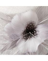 Lyst john lewis maya silk flower occasion hat in blue john lewis irene down brim spot feather flower occasion hat lyst mightylinksfo