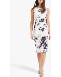 Phase Eight - Gracie Floral Scuba Dress - Lyst