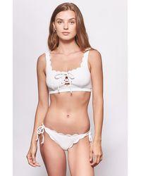 Joie Marysia Mott Bikini Bottom