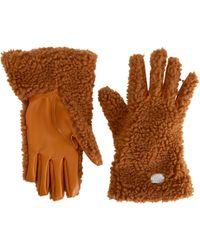 Stella McCartney - Camel Cashmere Gloves - Lyst