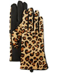 Karl Lagerfeld - Leopard-print Leather Combo Gloves - Lyst