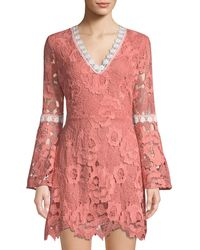 5377b918d34b Alexia Admor - Lace Bell-sleeve Fit & Flare Dress - Lyst