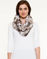 Le Chateau - Floral Scarf - Lyst