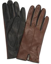 Portolano - Two-tone Nappa Gloves - Lyst