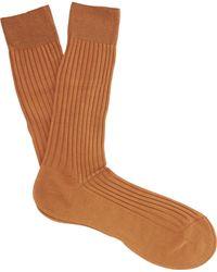 Pantherella Danvers Ribbed Socks - Brown